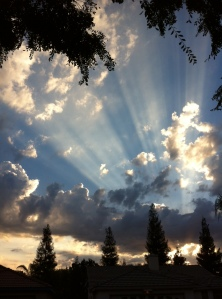 This was the glorious sky just before sundown on Cindy's birthday.  Rest in peace, Beautiful.